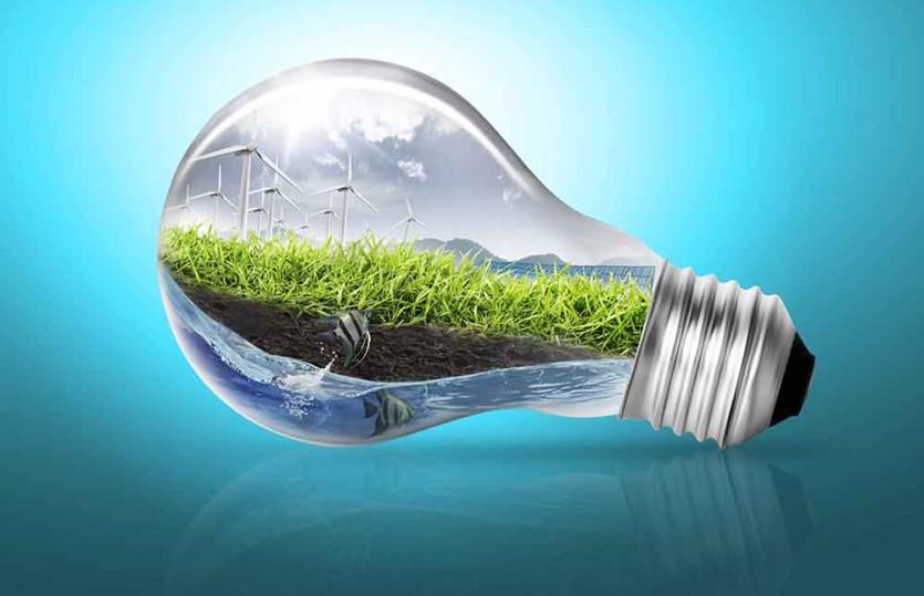 Veja algumas dicas ambientais para as empresas